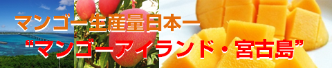 mango-island480x100