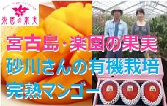 yamanomi-topbnr236