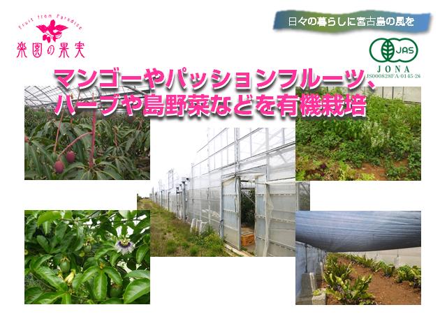 rakuen-yuki3_640x480