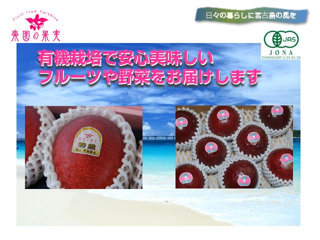 rakuen-yuki4_640x480
