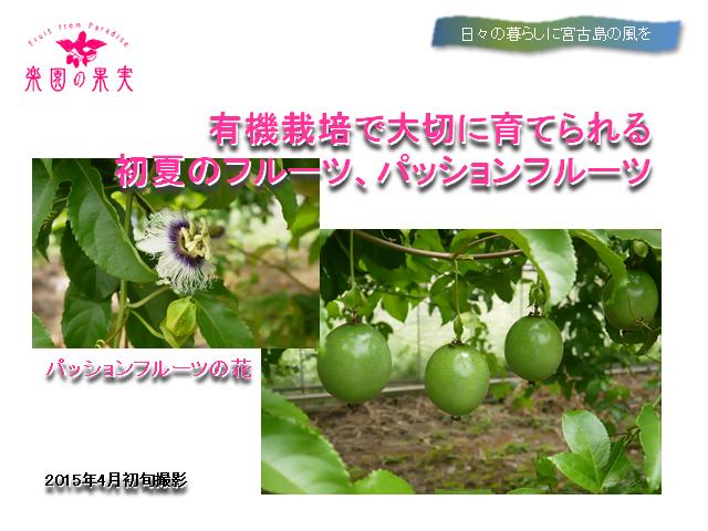 sunakawahoumon2_480x120