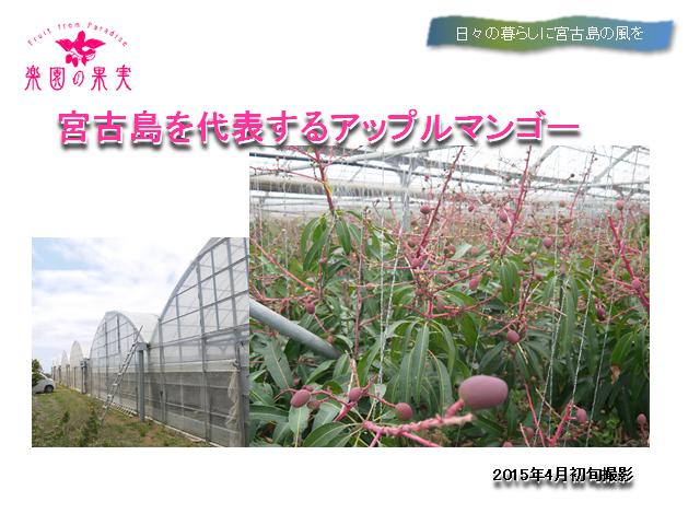 sunakawahoumon4_480x120