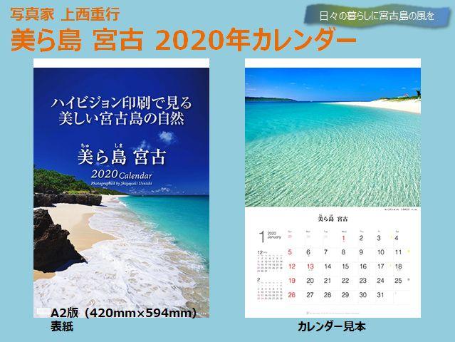 uenishi-birashima2020-1