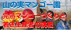 yamanoi_bnr236x100