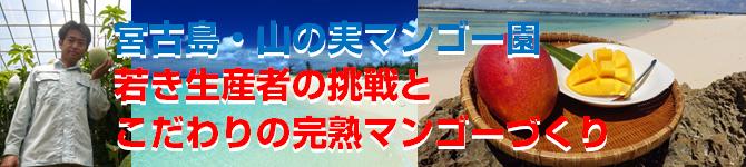 yamanomi-charenge670x150