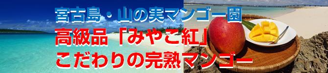 yamanomi-mango670x150