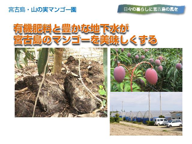 yamanomi5_640x480