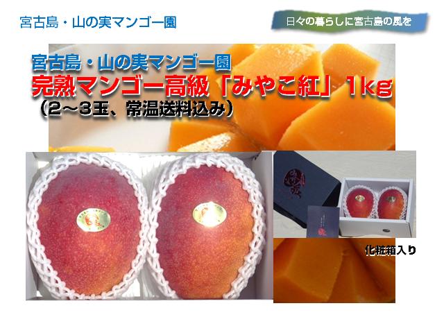 yamanomi_miyakobeni640x480
